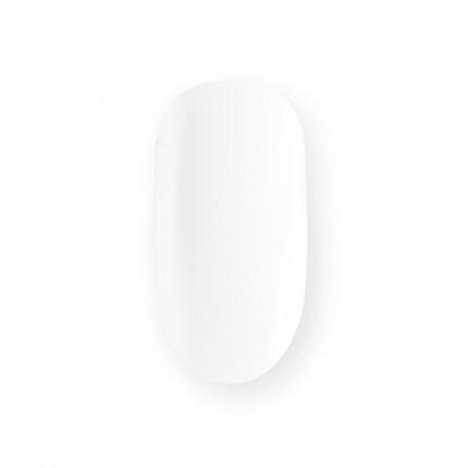 Acrylic Powder Clear 25g - ASTONISHING - priehľadný akrylový prášok